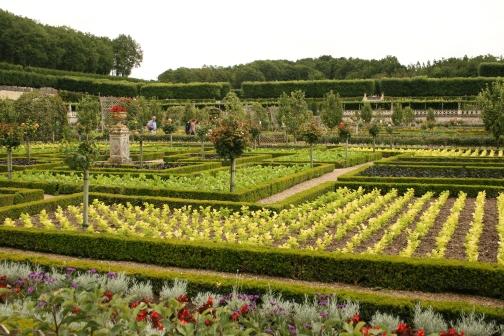 Château de Villandry - The vegetable garden