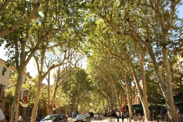 The beautiful Cours Mirabeau